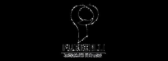 As nossas marcas - Puricelli